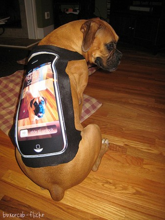 iPhone cape costume for dog