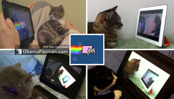 Catception iPad Nyan Cat Inception