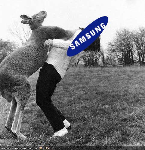 Kangaroo Punch Samsung