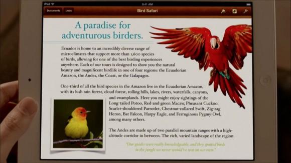 Bird Safari iPad 3